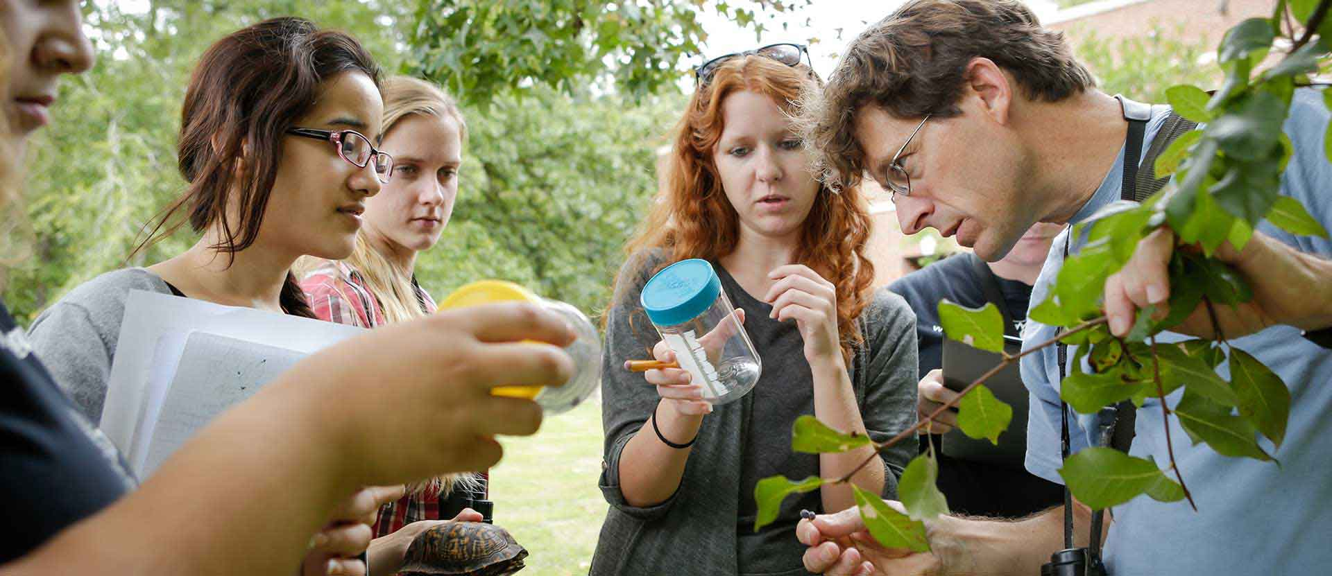 Students and faculty member takes samples in the arboretum