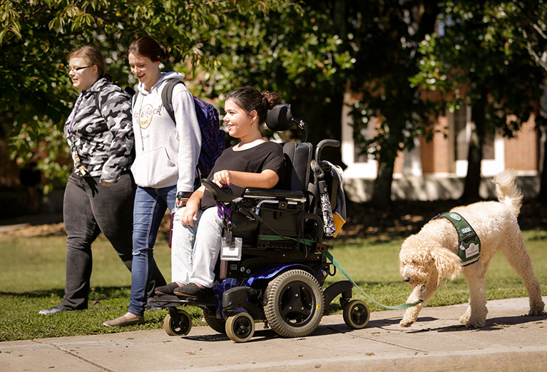 Student in electronic wheelchair goes to class with two classmates and her service dog on sunny day.